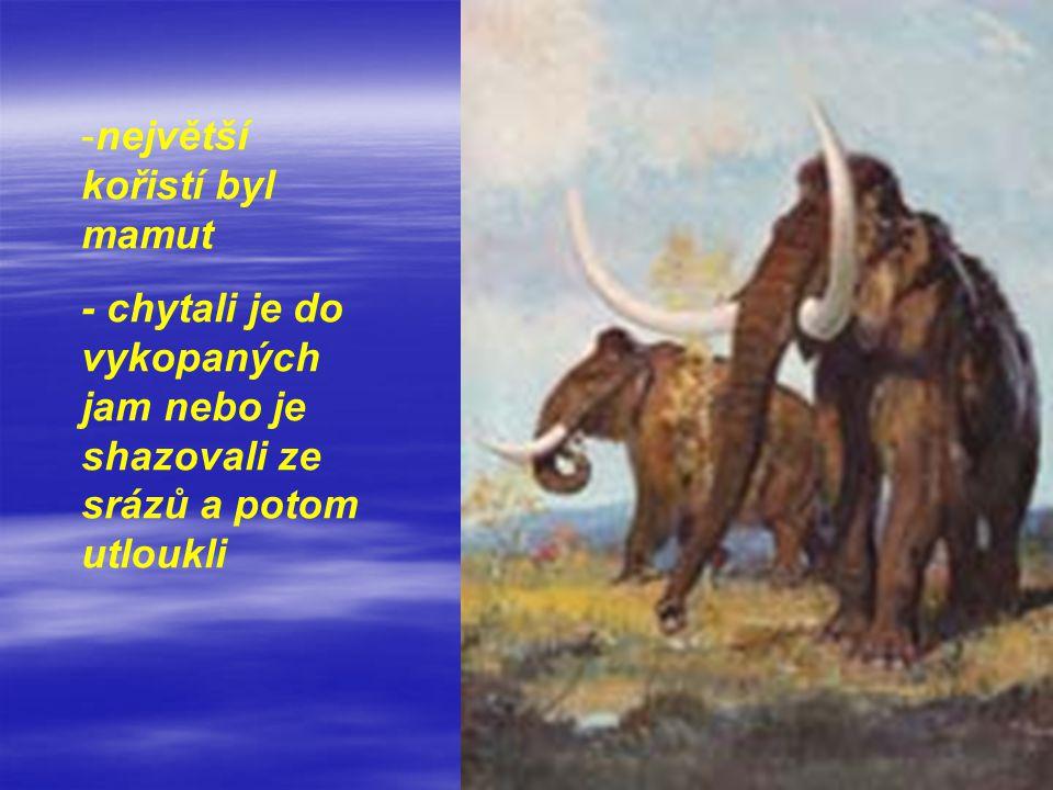 -největší kořistí byl mamut - chytali je do vykopaných jam nebo je shazovali ze srázů a potom utloukli