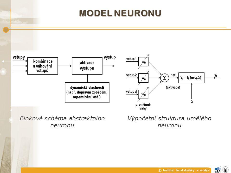 © Institut biostatistiky a analýz MODEL NEURONU Blokové schéma abstraktního neuronu Výpočetní struktura umělého neuronu