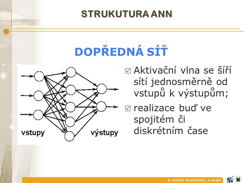 © Institut biostatistiky a analýz STRUKUTURA ANN  Aktivační vlna se šíří sítí jednosměrně od vstupů k výstupům;  realizace buď ve spojitém či diskré