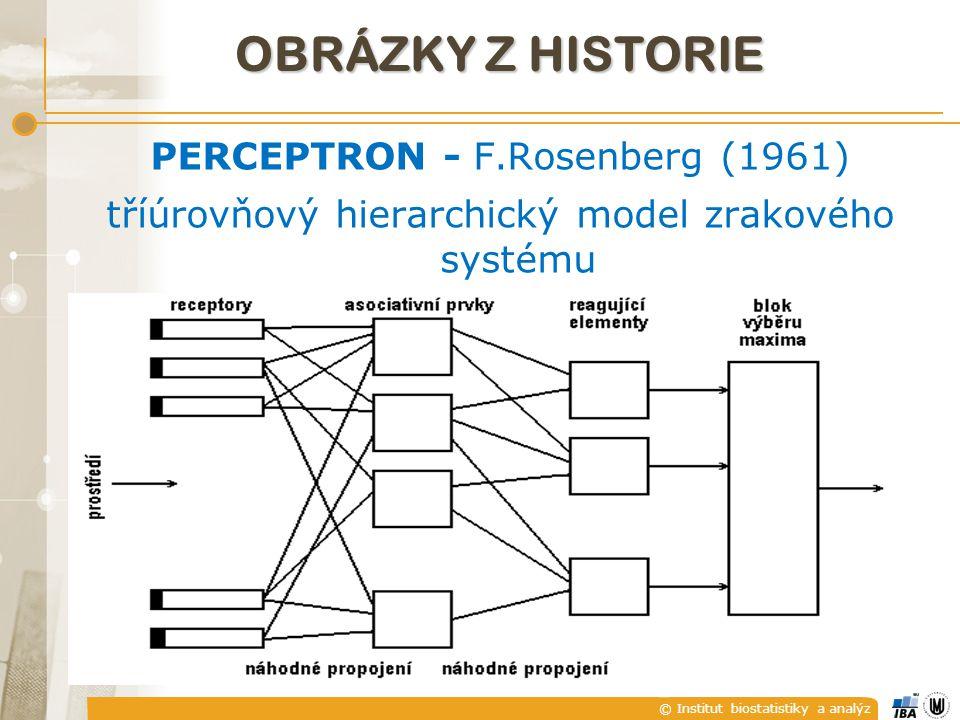 © Institut biostatistiky a analýz PERCEPTRON - F.Rosenberg (1961) tříúrovňový hierarchický model zrakového systému OBRÁZKY Z HISTORIE