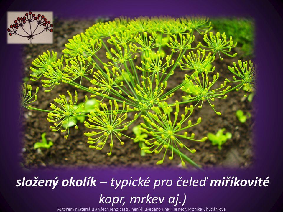 složený okolík – typické pro čeleď miříkovité kopr, mrkev aj.) Autorem materiálu a všech jeho částí, není-li uvedeno jinak, je Mgr. Monika Chudárková