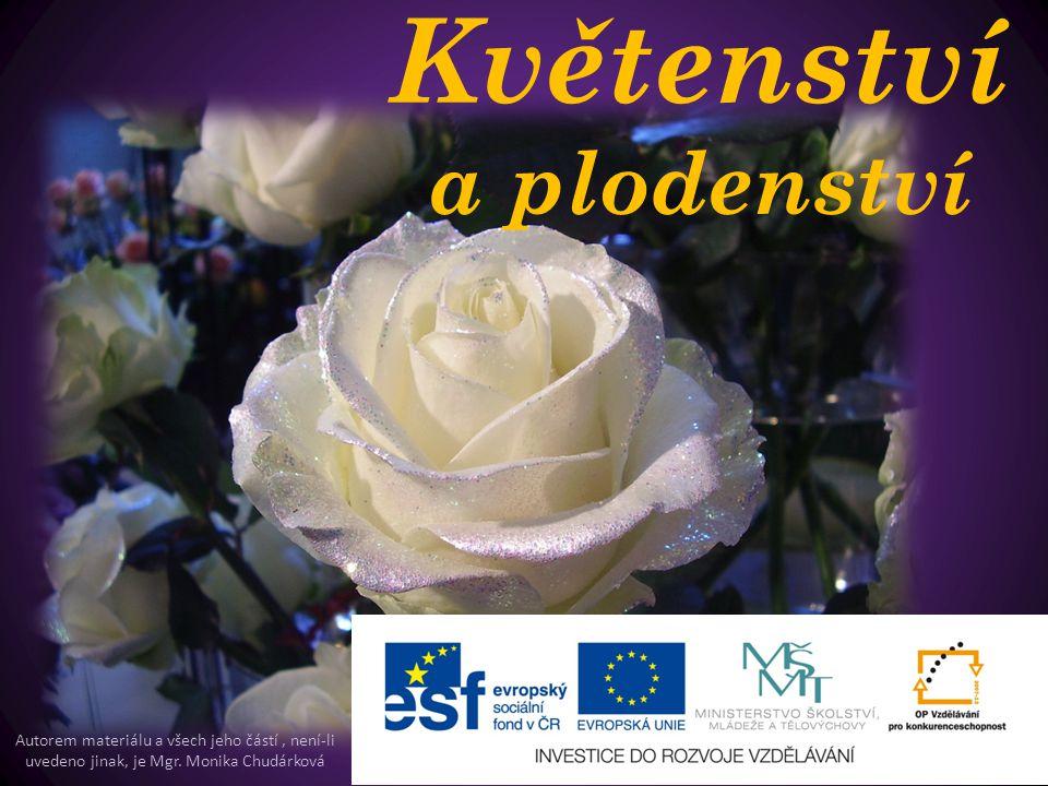Květenství a plodenství Autorem materiálu a všech jeho částí, není-li uvedeno jinak, je Mgr. Monika Chudárková