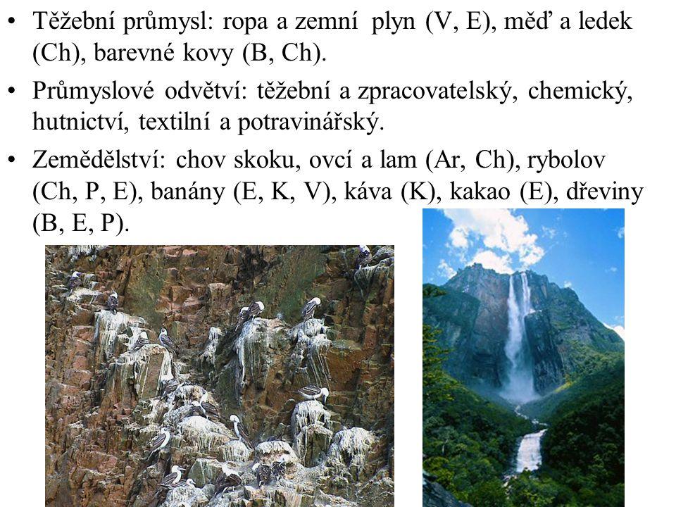 Těžební průmysl: ropa a zemní plyn (V, E), měď a ledek (Ch), barevné kovy (B, Ch).