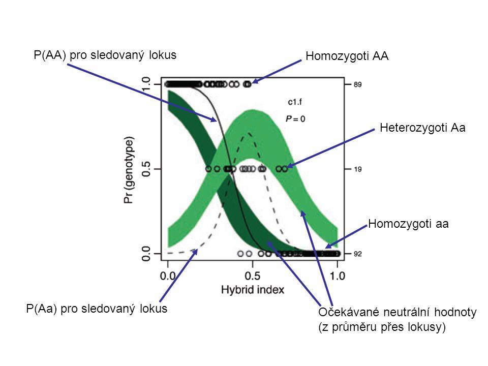 Heterozygoti Aa Homozygoti AA Homozygoti aa P(AA) pro sledovaný lokus P(Aa) pro sledovaný lokus Očekávané neutrální hodnoty (z průměru přes lokusy)