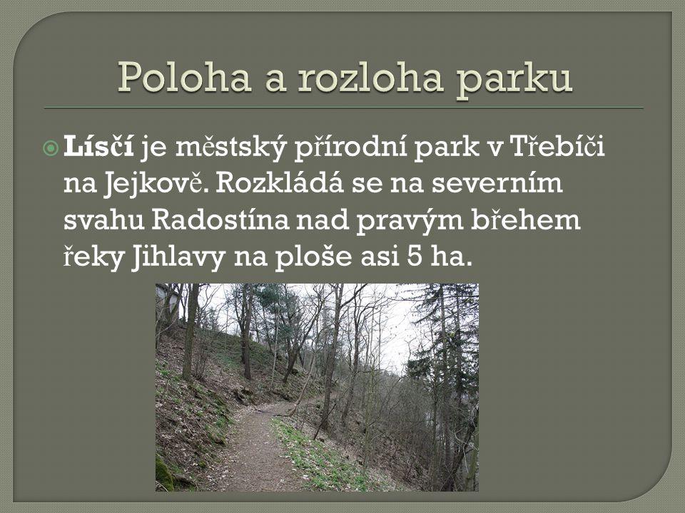  Lís č í je m ě stský p ř írodní park v T ř ebí č i na Jejkov ě.