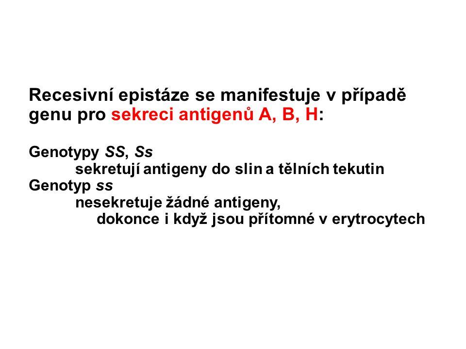 Recesivní epistáze se manifestuje v případě genu pro sekreci antigenů A, B, H: Genotypy SS, Ss sekretují antigeny do slin a tělních tekutin Genotyp ss