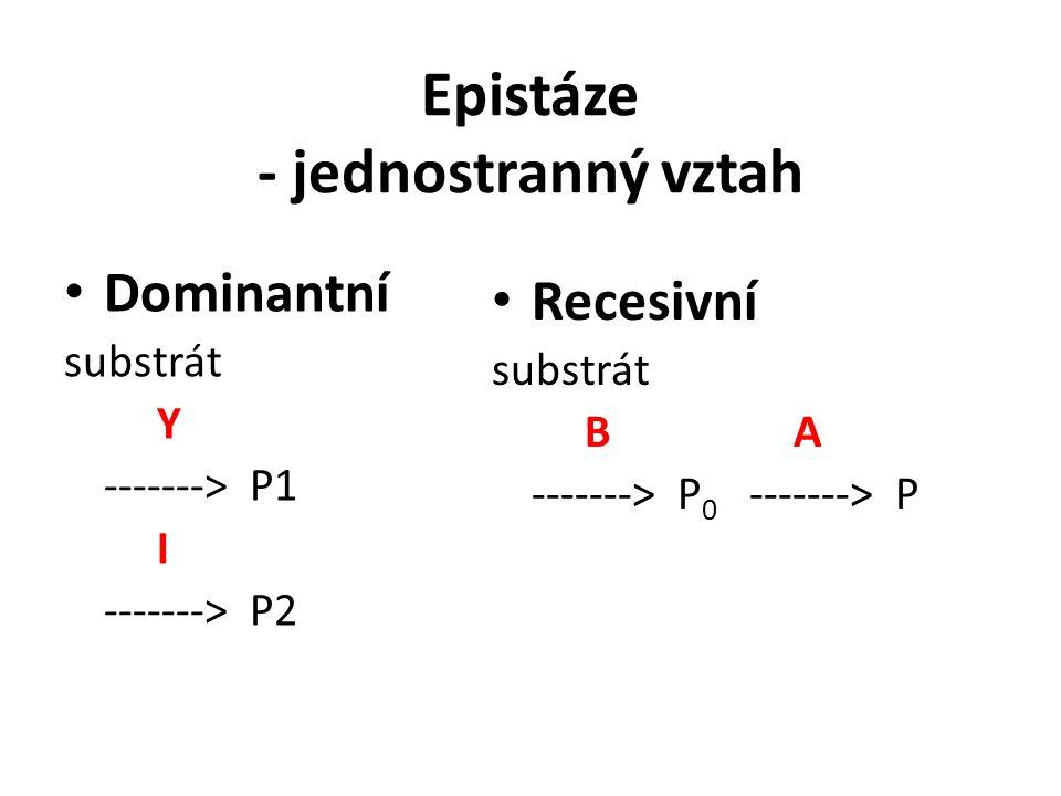 Epistáze - jednostranný vztah Dominantní substrát Y -------> P1 I -------> P2 Recesivní substrát B A -------> P 0 -------> P