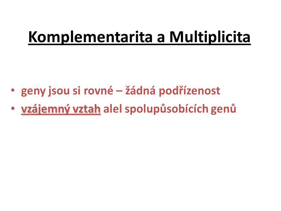 Komplementarita a Multiplicita geny jsou si rovné – žádná podřízenost vzájemný vztah vzájemný vztah alel spolupůsobících genů