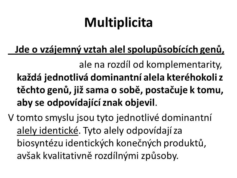 Multiplicita Jde o vzájemný vztah alel spolupůsobících genů, ale na rozdíl od komplementarity, každá jednotlivá dominantní alela kteréhokoli z těchto