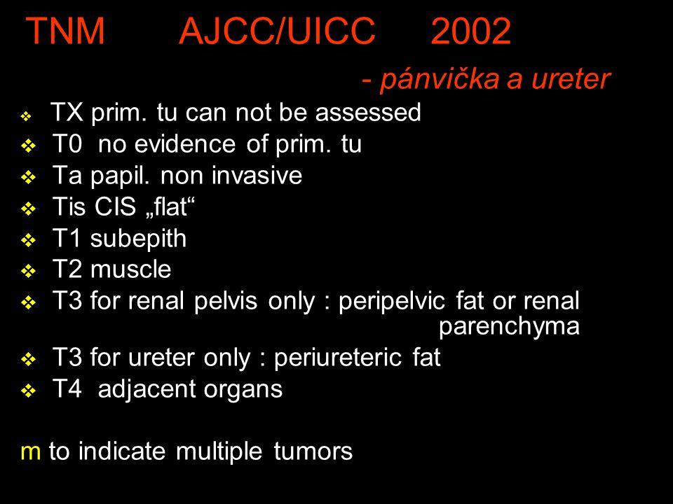 TNM AJCC/UICC 2002 - pánvička a ureter v TX prim.tu can not be assessed v T0 no evidence of prim.