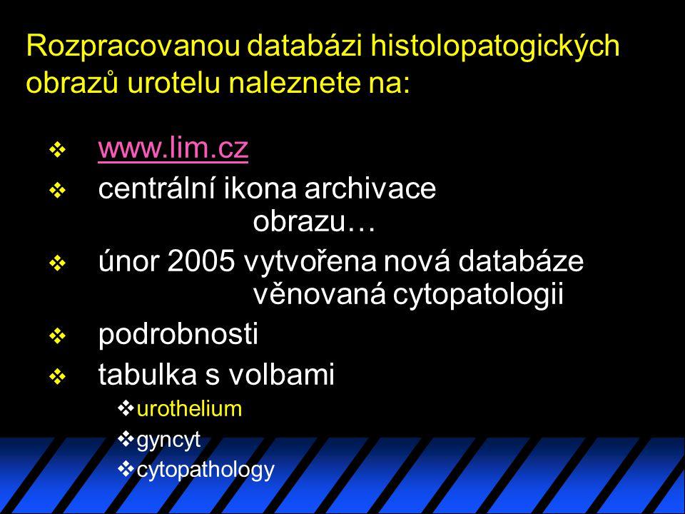 Rozpracovanou databázi histolopatogických obrazů urotelu naleznete na: v www.lim.czwww.lim.cz v centrální ikona archivace obrazu… v únor 2005 vytvořena nová databáze věnovaná cytopatologii v podrobnosti v tabulka s volbami vurothelium vgyncyt vcytopathology