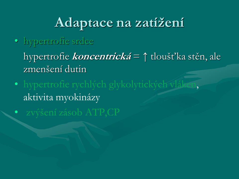 Adaptace na zatížení hypertrofie srdcehypertrofie srdce hypertrofie koncentrická = ↑ tloušťka stěn, ale zmenšení dutin hypertrofie rychlých glykolytických vláken, aktivita myokinázy zvýšení zásob ATP,CP