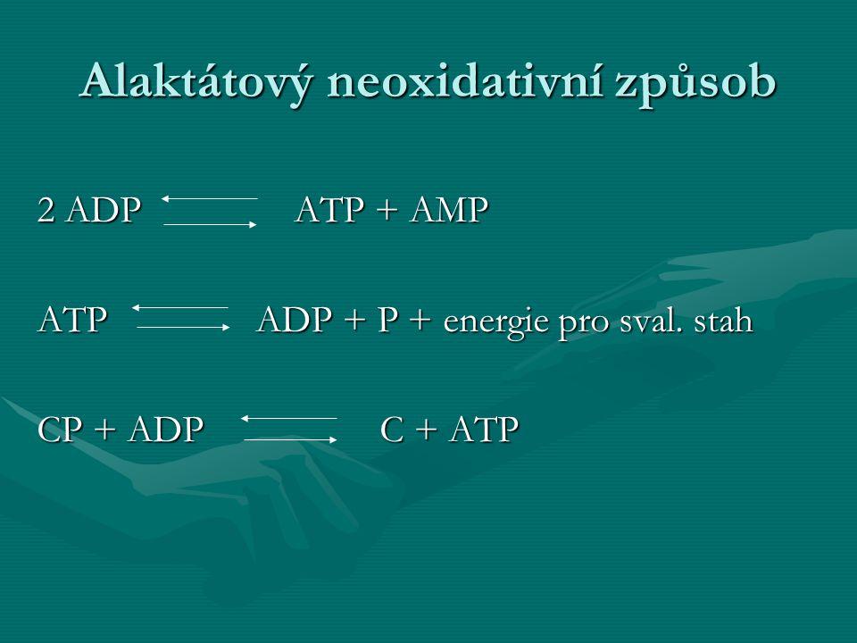 Alaktátový neoxidativní způsob 2 ADPATP + AMP ATP ADP + P + energie pro sval. stah CP + ADP C + ATP