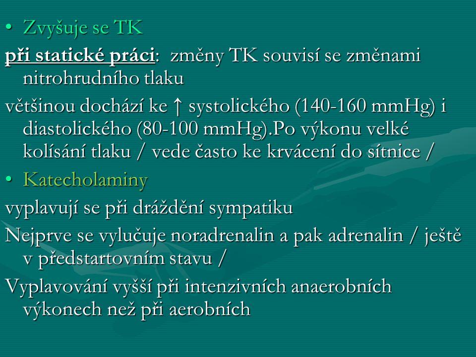 Zvyšuje se TKZvyšuje se TK při statické práci: změny TK souvisí se změnami nitrohrudního tlaku většinou dochází ke ↑ systolického (140-160 mmHg) i diastolického (80-100 mmHg).Po výkonu velké kolísání tlaku / vede často ke krvácení do sítnice / KatecholaminyKatecholaminy vyplavují se při dráždění sympatiku Nejprve se vylučuje noradrenalin a pak adrenalin / ještě v předstartovním stavu / Vyplavování vyšší při intenzivních anaerobních výkonech než při aerobních