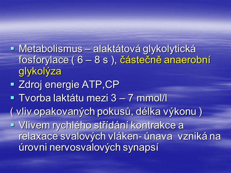  Metabolismus – alaktátová glykolytická fosforylace ( 6 – 8 s ), částečně anaerobní glykolýza  Zdroj energie ATP,CP  Tvorba laktátu mezi 3 – 7 mmol