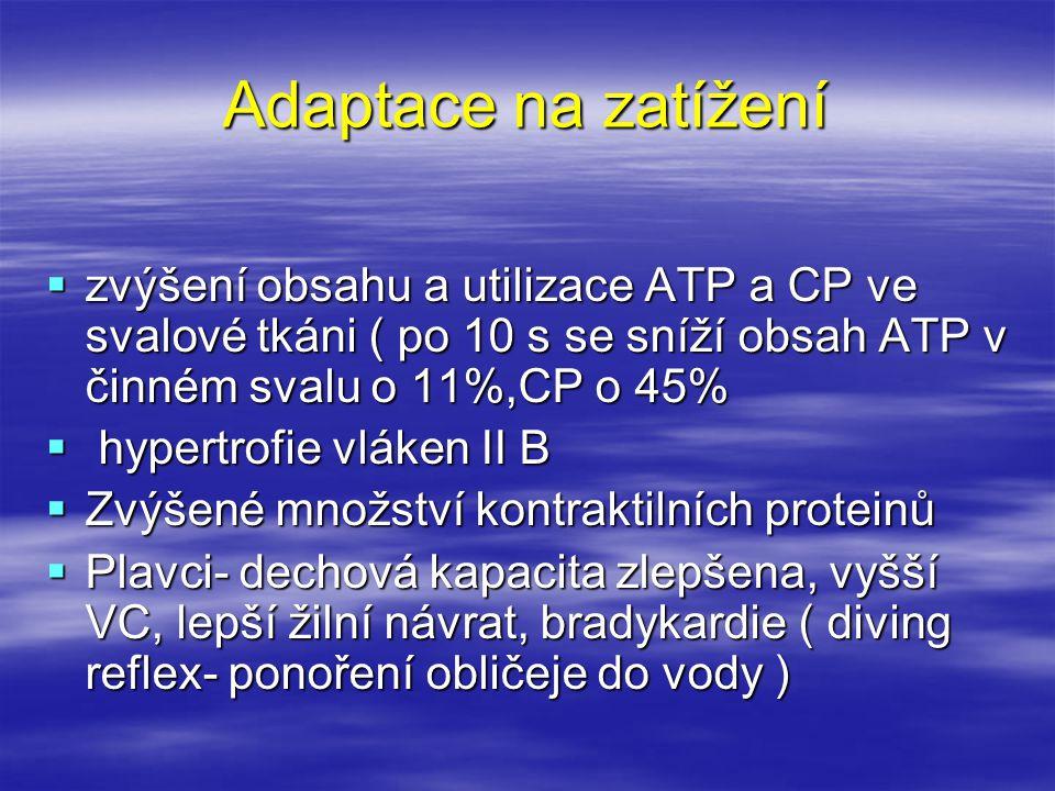 Adaptace na zatížení  zvýšení obsahu a utilizace ATP a CP ve svalové tkáni ( po 10 s se sníží obsah ATP v činném svalu o 11%,CP o 45%  hypertrofie v