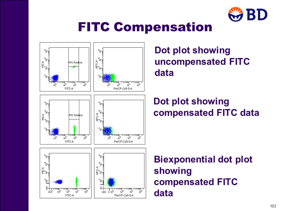 103 FITC Compensation Dot plot showing uncompensated FITC data Dot plot showing compensated FITC data Biexponential dot plot showing compensated FITC data