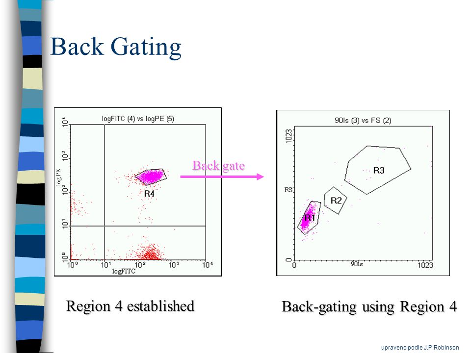 Back Gating Region 4 established Back-gating using Region 4 log PE Back gate Back gate upraveno podle J.P.Robinson