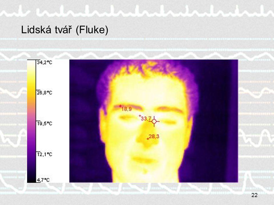 22 Lidská tvář (Fluke)