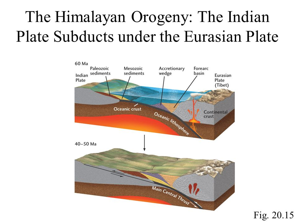 Fig. 20.15 The Himalayan Orogeny: The Indian Plate Subducts under the Eurasian Plate