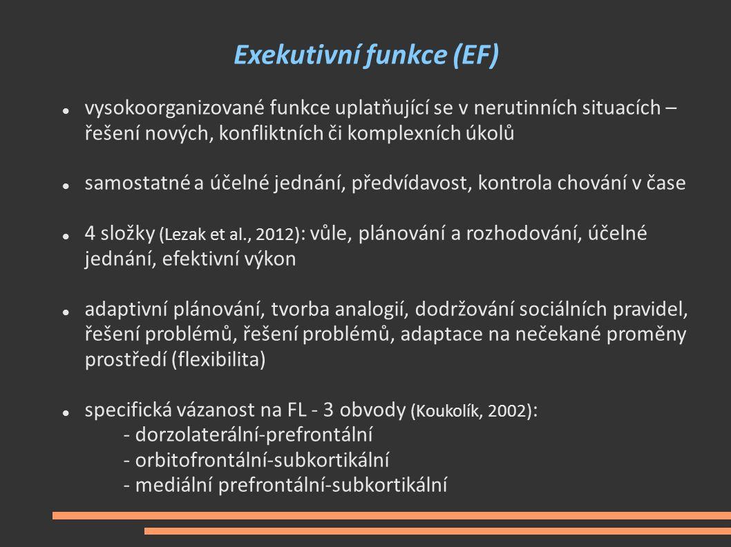 Exekutivní funkce (EF) vysokoorganizované funkce uplatňující se v nerutinních situacích – řešení nových, konfliktních či komplexních úkolů samostatné