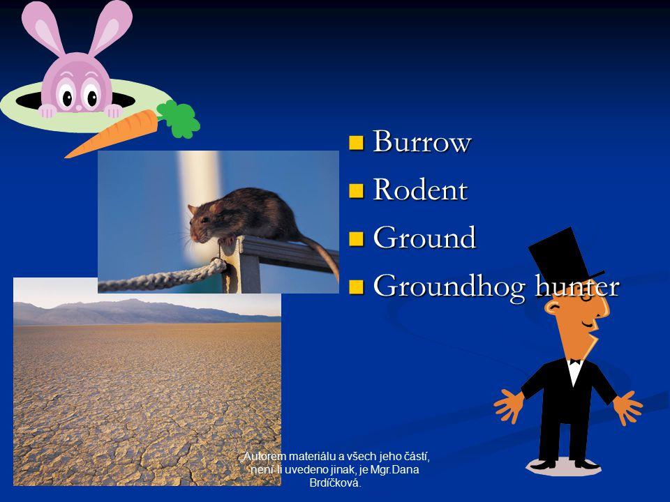 """Burrow Rodent Ground Groundhog hunter """"Autorem materiálu a všech jeho částí, není-li uvedeno jinak, je Mgr.Dana Brdíčková."""