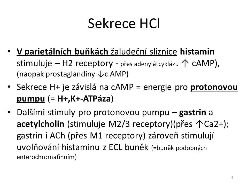 Sekrece HCl V parietálních buňkách žaludeční sliznice histamin stimuluje – H2 receptory - přes adenylátcyklázu ↑ cAMP), (naopak prostaglandiny ↓c AMP)