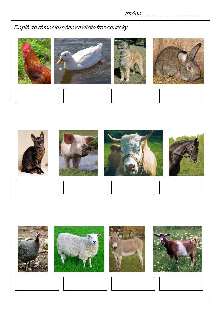 Doplň do rámečku název zvířete francouzsky. Jméno: …………………………