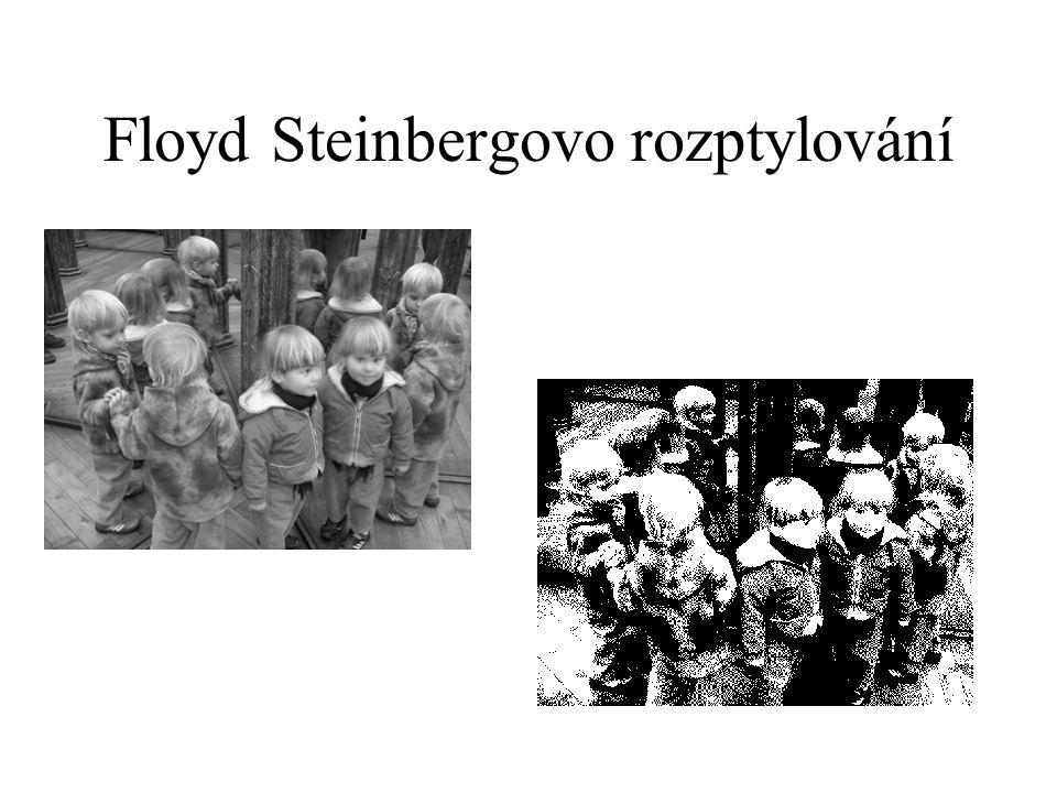 Floyd Steinbergovo rozptylování