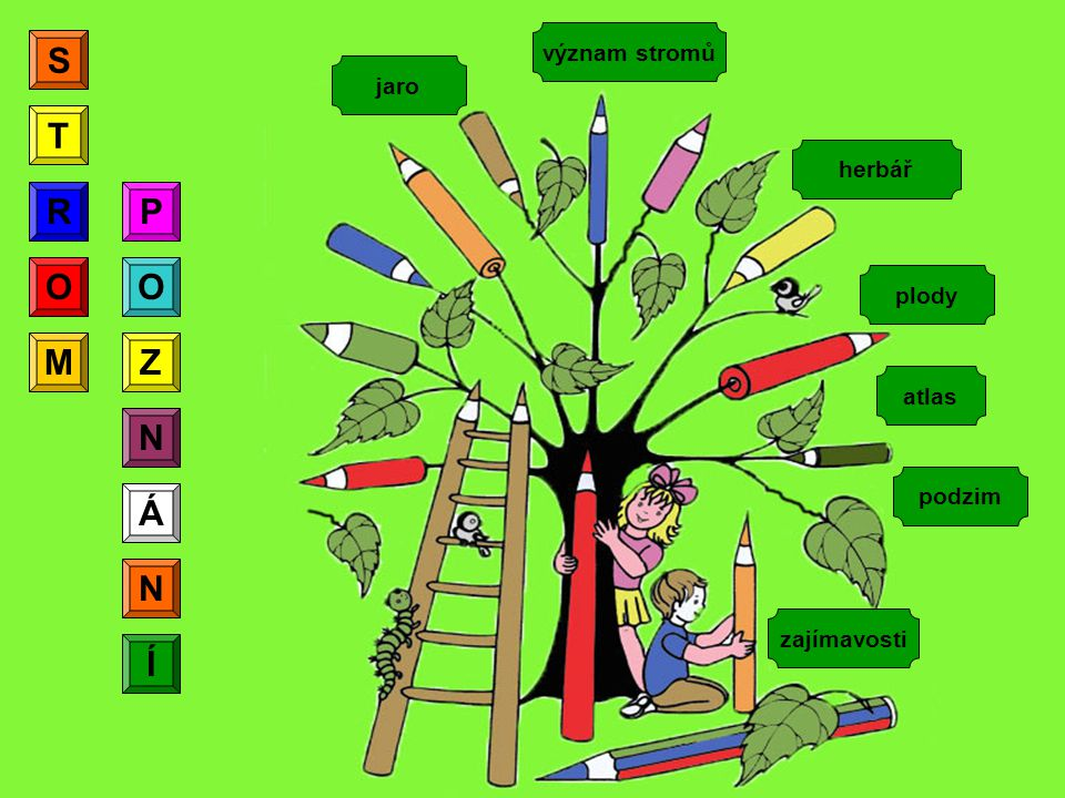 herbář význam stromů podzim jaro plody zajímavosti S T R O M P O Z N Á N Í R atlas