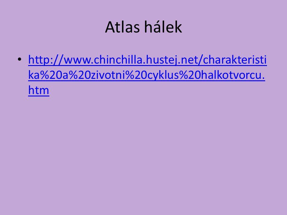 Atlas hálek http://www.chinchilla.hustej.net/charakteristi ka%20a%20zivotni%20cyklus%20halkotvorcu.