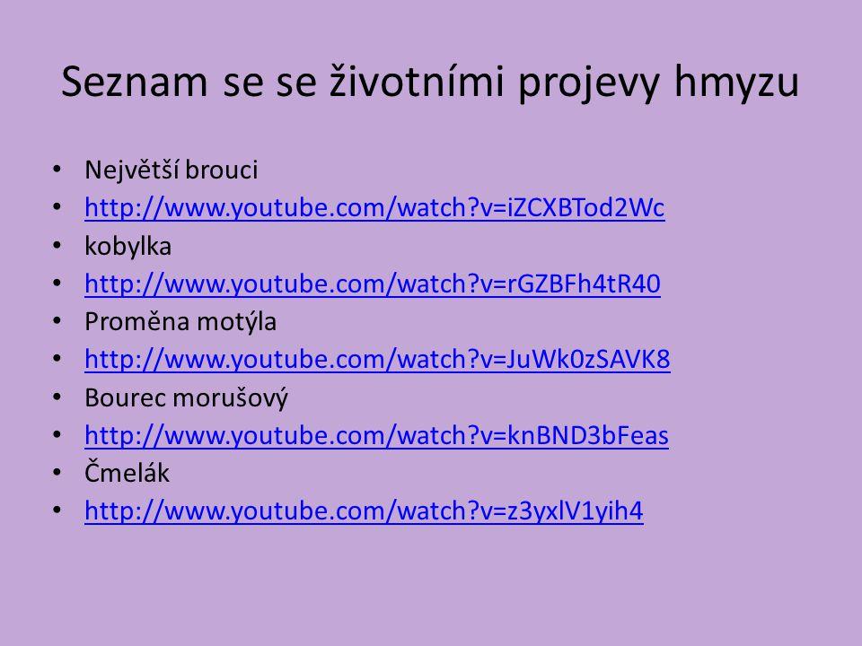 Seznam se se životními projevy hmyzu Největší brouci http://www.youtube.com/watch?v=iZCXBTod2Wc kobylka http://www.youtube.com/watch?v=rGZBFh4tR40 Proměna motýla http://www.youtube.com/watch?v=JuWk0zSAVK8 Bourec morušový http://www.youtube.com/watch?v=knBND3bFeas Čmelák http://www.youtube.com/watch?v=z3yxlV1yih4