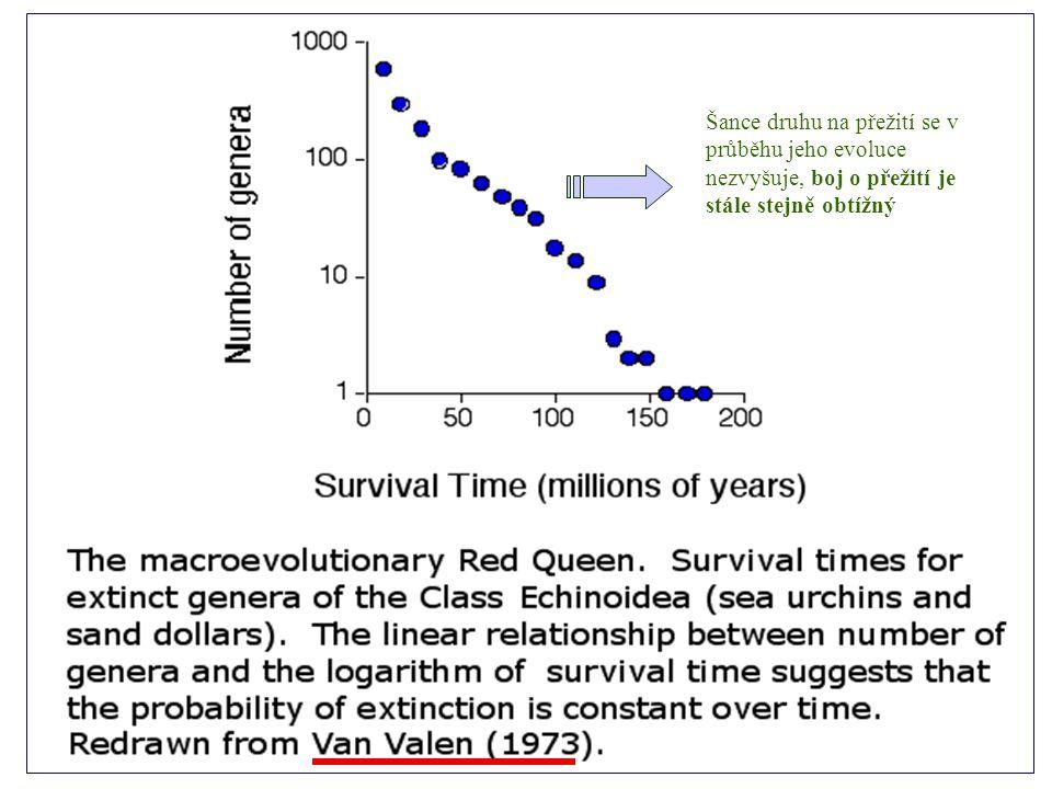 Šance druhu na přežití se v průběhu jeho evoluce nezvyšuje, boj o přežití je stále stejně obtížný