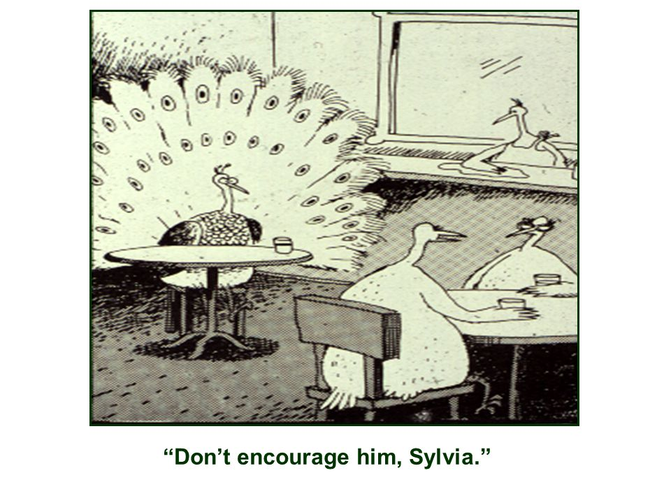 Don't encourage him, Sylvia.