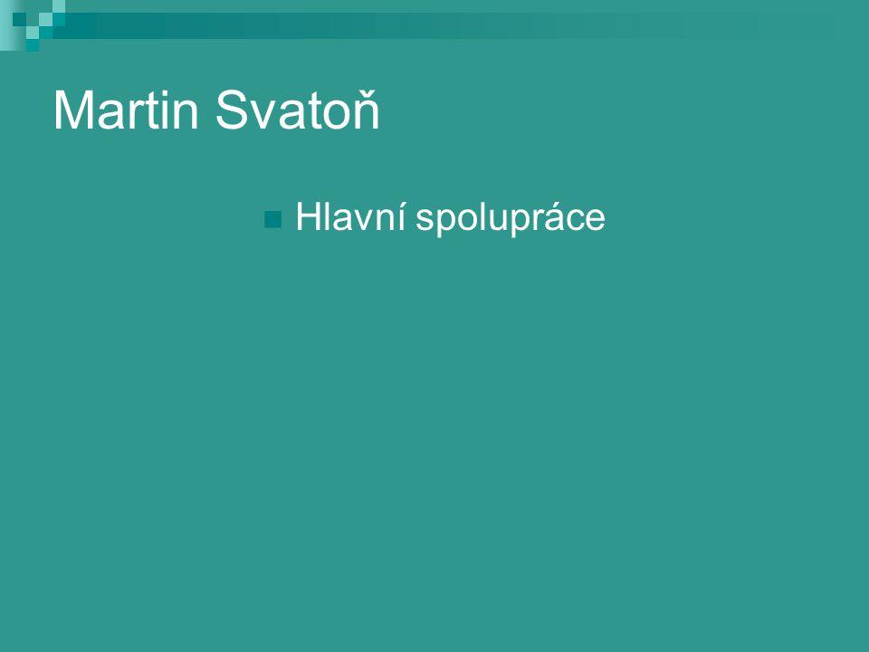 Martin Svatoň Hlavní spolupráce