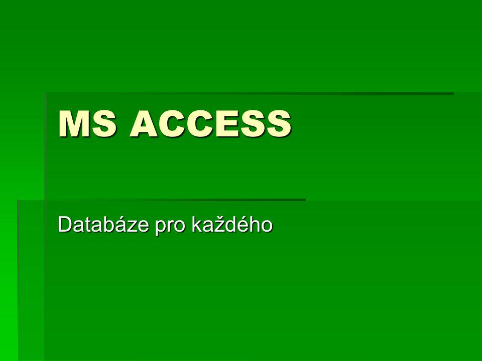 MS ACCESS Databáze pro každého