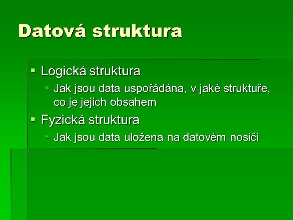 Datová struktura  Logická struktura  Jak jsou data uspořádána, v jaké struktuře, co je jejich obsahem  Fyzická struktura  Jak jsou data uložena na datovém nosiči