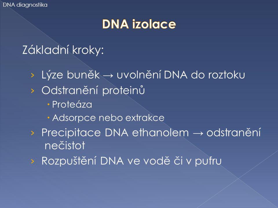 Základní kroky: › Lýze buněk → uvolnění DNA do roztoku › Odstranění proteinů  Proteáza  Adsorpce nebo extrakce › Precipitace DNA ethanolem → odstran
