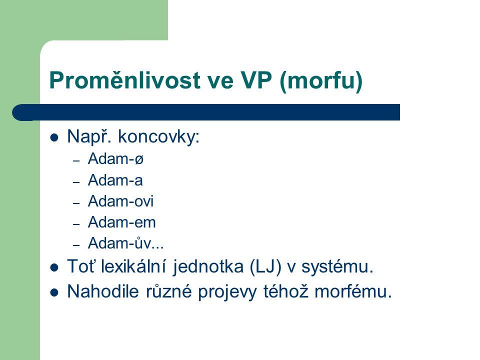 Proměnlivost ve VP (morfu) Např. koncovky: – Adam-ø – Adam-a – Adam-ovi – Adam-em – Adam-ův... Toť lexikální jednotka (LJ) v systému. Nahodile různé p