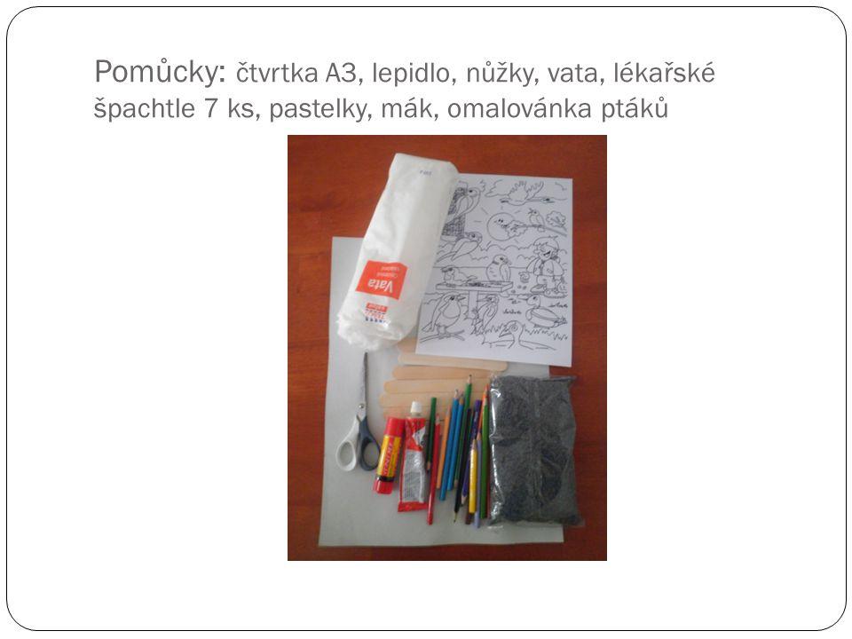 Pomůcky: čtvrtka A3, lepidlo, nůžky, vata, lékařské špachtle 7 ks, pastelky, mák, omalovánka ptáků