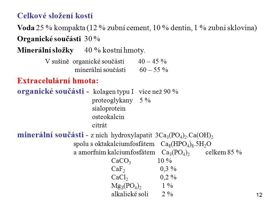 12 Celkové složení kostí Voda 25 % kompakta (12 % zubní cement, 10 % dentin, 1 % zubní sklovina) Organické součásti 30 % Minerální složky 40 % kostní hmoty.