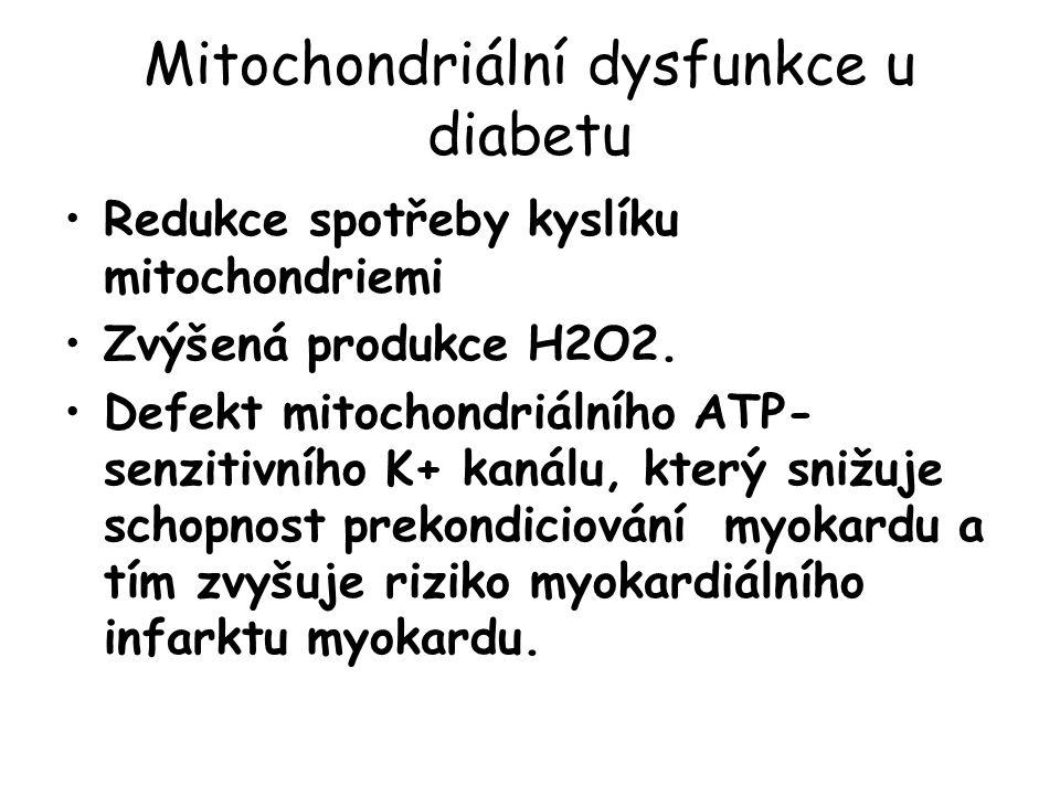 Mitochondriální dysfunkce u diabetu Redukce spotřeby kyslíku mitochondriemi Zvýšená produkce H2O2.