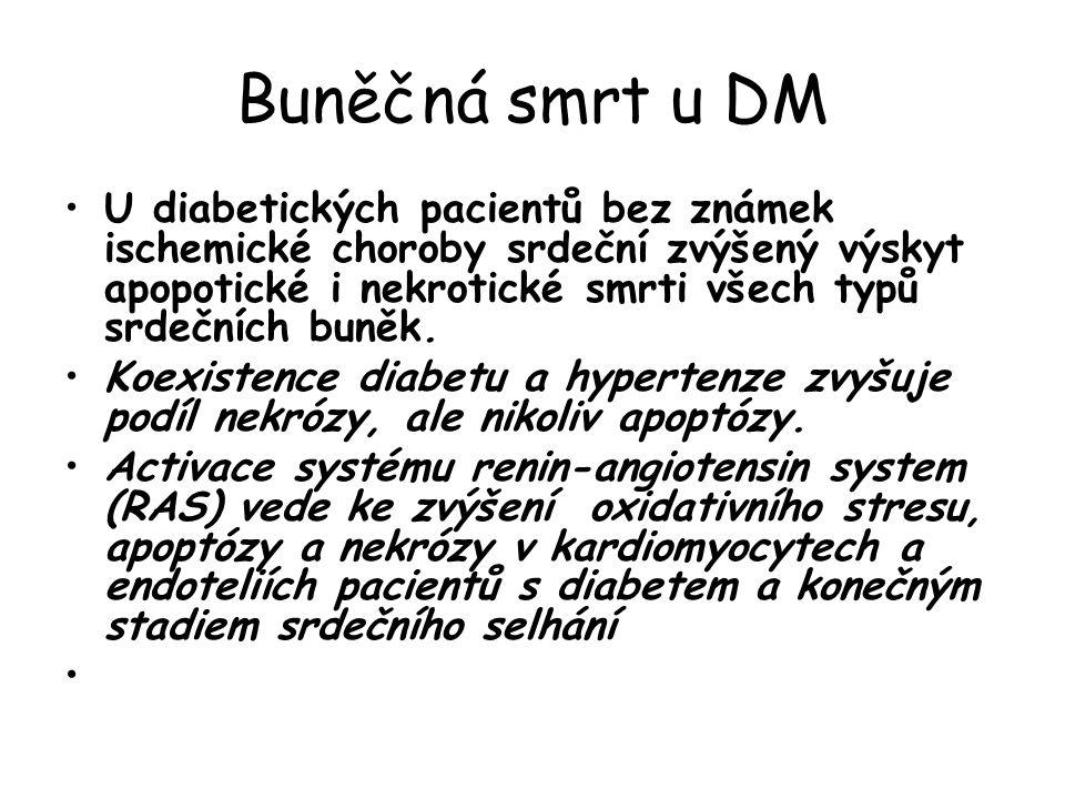 Buněčná smrt u DM U diabetických pacientů bez známek ischemické choroby srdeční zvýšený výskyt apopotické i nekrotické smrti všech typů srdečních buněk.