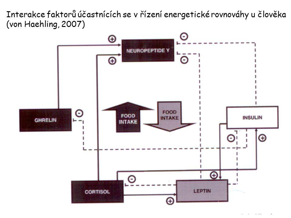 Interakce faktorů účastnících se v řízení energetické rovnováhy u člověka (von Haehling, 2007)
