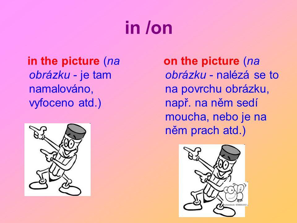 in /on in the picture (na obrázku - je tam namalováno, vyfoceno atd.) on the picture (na obrázku - nalézá se to na povrchu obrázku, např. na něm sedí