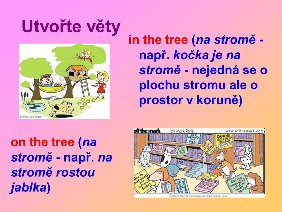 Utvořte věty in the tree (na stromě - např. kočka je na stromě - nejedná se o plochu stromu ale o prostor v koruně) on the tree (na stromě - např. na
