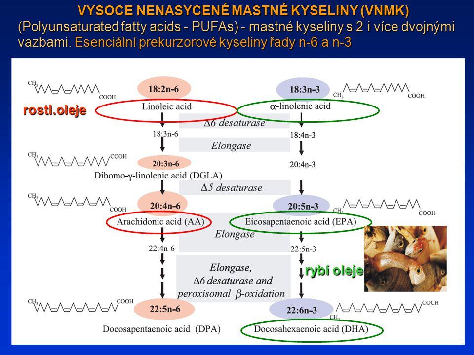 rostl.oleje rybí oleje VYSOCE NENASYCENÉ MASTNÉ KYSELINY (VNMK) (Polyunsaturated fatty acids - PUFAs) - mastné kyseliny s 2 i více dvojnými vazbami. E