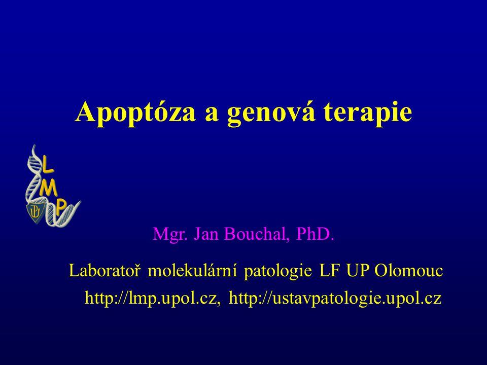 Apoptóza a genová terapie Mgr.Jan Bouchal, PhD.
