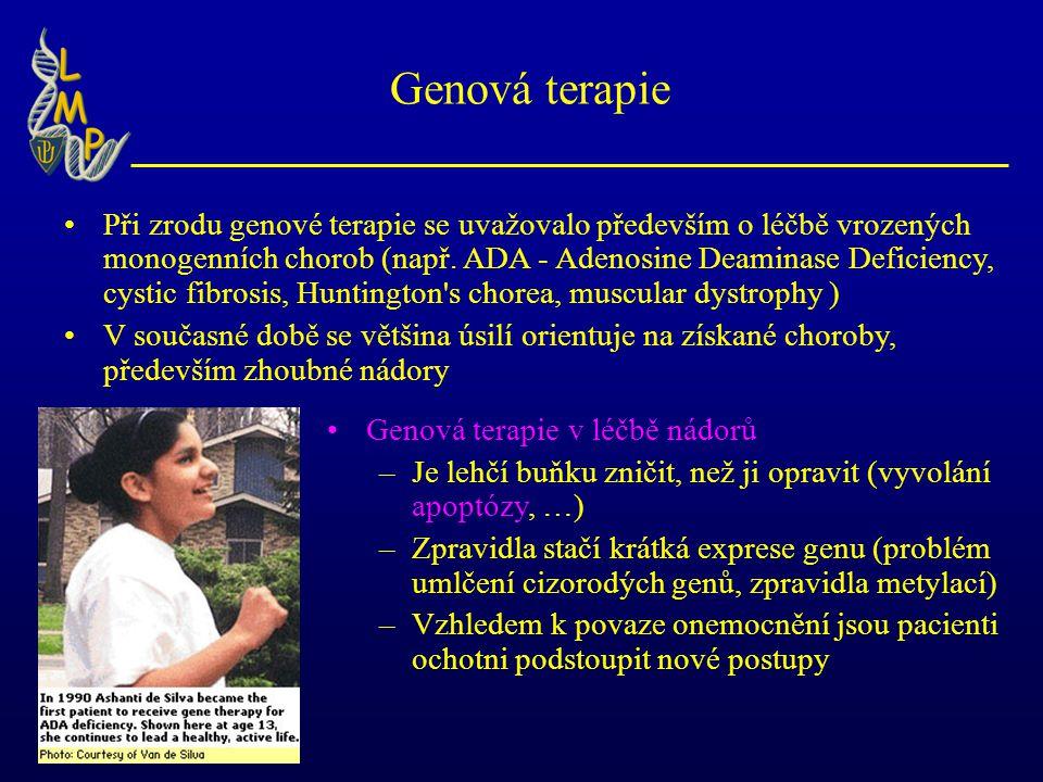 Genová terapie Při zrodu genové terapie se uvažovalo především o léčbě vrozených monogenních chorob (např.