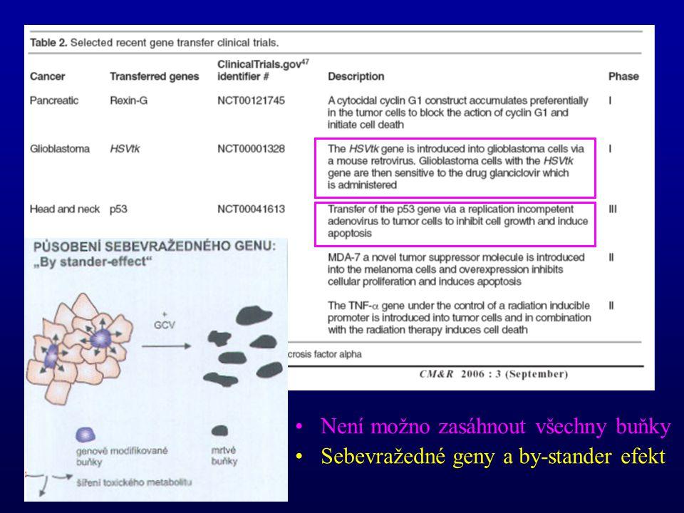 Není možno zasáhnout všechny buňky Sebevražedné geny a by-stander efekt